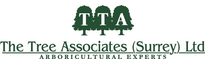 The Tree Associates (Surrey) Limited