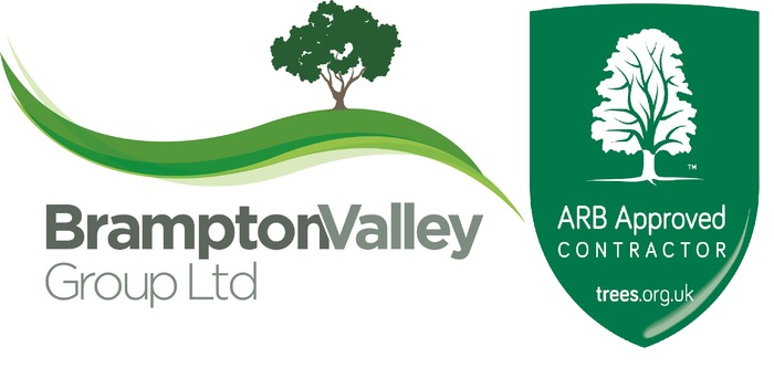 Brampton Valley Group Limited