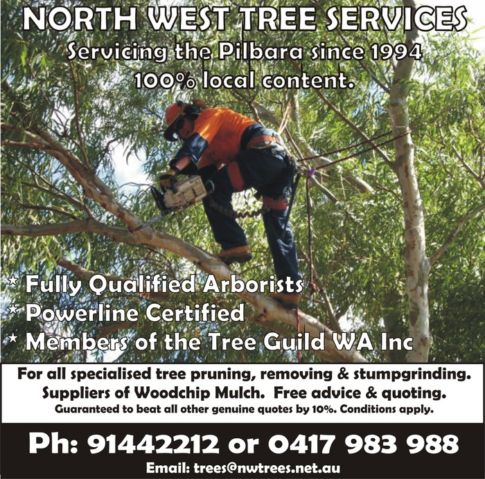 North West Tree Services